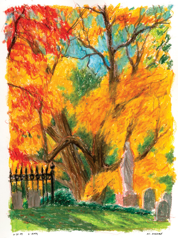 Foliage in Mt Auburn 2009 #1 (oil pastel)